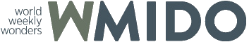 Logo WMido